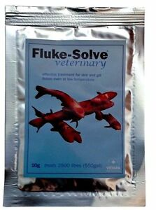 vetark fluke solve 10g anti fluke treatment for fish flicking