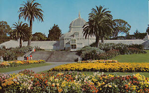SAN FRANCISCO  Golden Gate Park - Salisbury, Wiltshire, United Kingdom - SAN FRANCISCO  Golden Gate Park - Salisbury, Wiltshire, United Kingdom