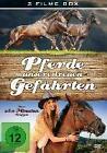 Pferde,unsere treuen Gefährten (2016)