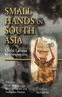 Small Hands in South Asia: Child Labour in Perspective by Ravi S. Srivastava, Shukadeo Thorat, Georges Kristoffel Lieten (Hardback, 2004)