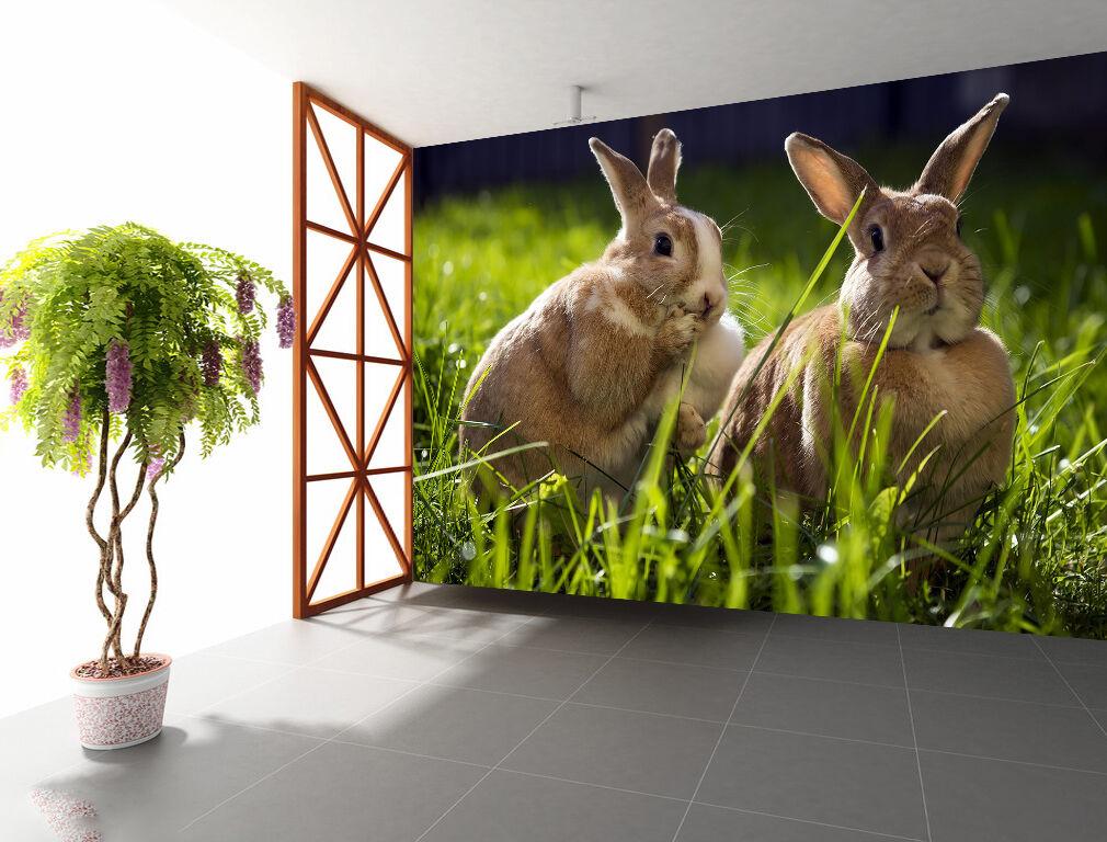 3D Lawn Funny Rabbits 2237 Paper Wall Print Wall Decal Wall Deco Indoor Murals
