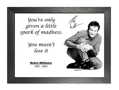 Robin Williams Inspirational Quote Spark Of Madness Picture ...