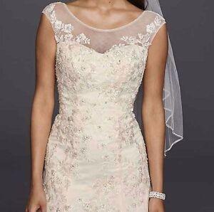 A Line Wedding Dress And Veil