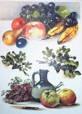 STAMPERIA INTERNATIONAL Fiori /& Frutta taglia unica KFT Confezione di Carta di Riso A4 FLWR Fruit