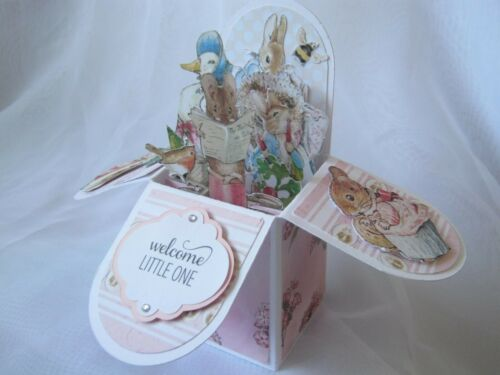 Hand Crafted Peter Rabbit Beatrix Potter New Baby Girl 3D Pop up Box Card