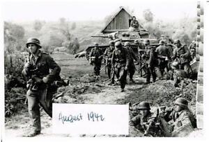 WW-2-Russland-Feldzug-battlefield-hier-14-08-1942-Kampf-um-Nikitskoje