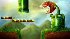 Nintendo Nes Snes GAMECUBE SUPER MARIO BROS PHOTO POSTER 8.5X11 Game Decor #3