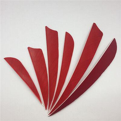 "RW 100pcs 5/"" Shield Cut Archery Fletches Red White Black Feather Fletchings"