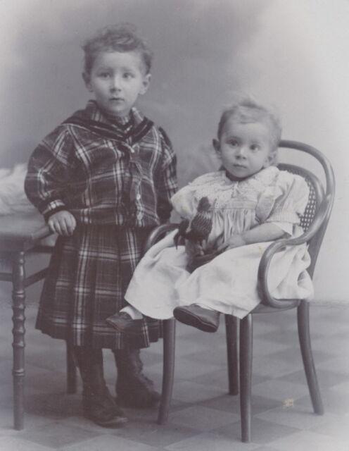 CDV: Süße Geschwister mit Steiff Hahn & Thonet Kinderstuhl; Alsfeld, um 1900