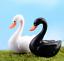 thumbnail 8 - Mini Swan Figurine Fairy Garden Ornaments Crafts Goose Model Miniature Animal