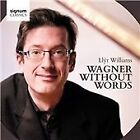 Wagner Without Words (2014)
