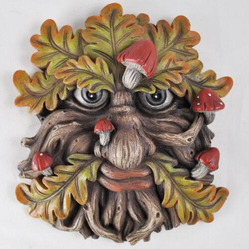 Albero Ent faccia FOGLIA Placca Muro ornamentale da giardino Greenman MITO fungiface 80600