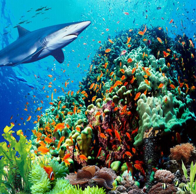 3D Gold Fisch 557 Fototapeten Wandbild Fototapete Tapete Familie DE Lemon
