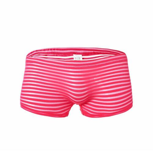 Transparent Strip Men/'s Mesh Underwear See-through Trunks Pouch Boxer Briefs