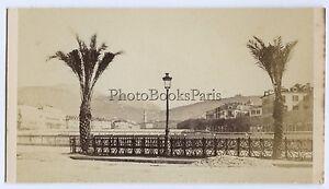 Nice-Francia-CDV-da-Miguel-Aloe-Vintage-Albumina-Ca-1860