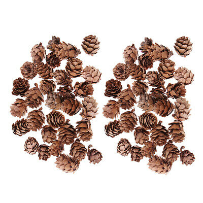 30Pieces Mini Natural Rustic Dried Pine Cones Christmas Party DIY Decoration