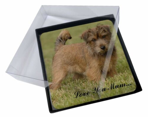 4x Norfolk Norwich Terrier 'Love You Mum' Picture Table Coasters Set, ADNT1lymC