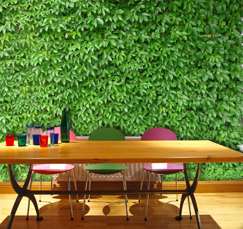 3D Grün Leaf Wall 83 Wallpaper Mural Paper Wall Print Wallpaper Murals UK