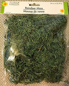 FLORAL REINDEER MOSS For Artificial Arrangements - 24 Cu. In. - FREE SHIPPING!!!