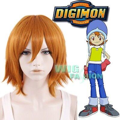 Digital Monster Digimon Sora Takenouchi Short Straight ...