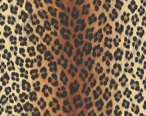 Das Bild Wird Geladen Tapete Leopard Leo Optik Orange Schwarz As Creation