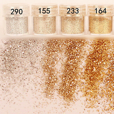 10ml Champagne Gold Silver Nail Art Glitter Powder Sequins UV GEL Tip Decoration