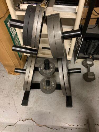 CAP Barbell 2 in Plate Rack RK-2A