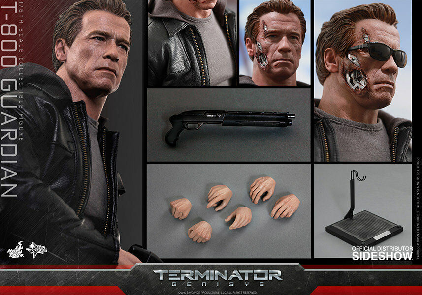 HOT TOYS Terminator Genisys T-800 GUARDIAN 12  1/6 Scale Figure Schwarzenegger