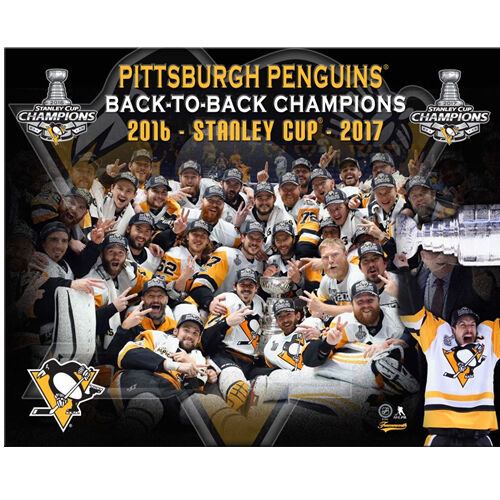 Pittsburgh Penguins Large 2017 Stanley Cup Plaque