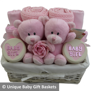 Adorable twin girls baby gift basket hamper baby shower new baby gift twins girl
