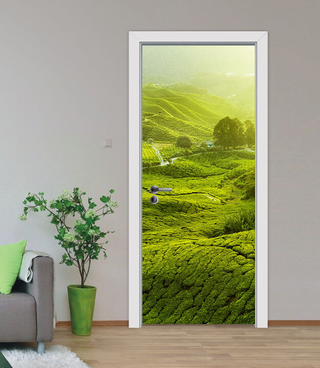 3D Grasland 79 79 79 Tür Wandmalerei Wandaufkleber Aufkleber AJ WALLPAPER DE Kyra | Viele Stile  | Einzigartig  |  3a70ef