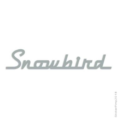 Measurements snowbird brown Rainy Brown