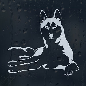 Siberian Funny Husky Dog Car Decal Vinyl Sticker For Window Or