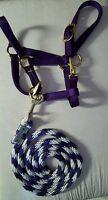 Amish Pony Horse 100 - 200 Lbs Halter Harness Tack Brass Purple