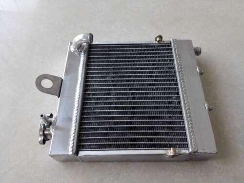 Radiateur usine gros volume Aprilia Bidalot 50 RS proto course radiators race