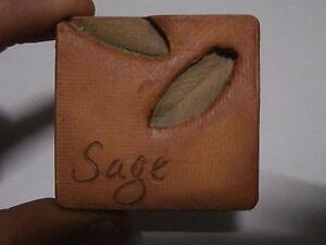 ** Rare refrigerator magnet ANIMAL MAGNETISM SAGE SALVIA calamita frigo rara**