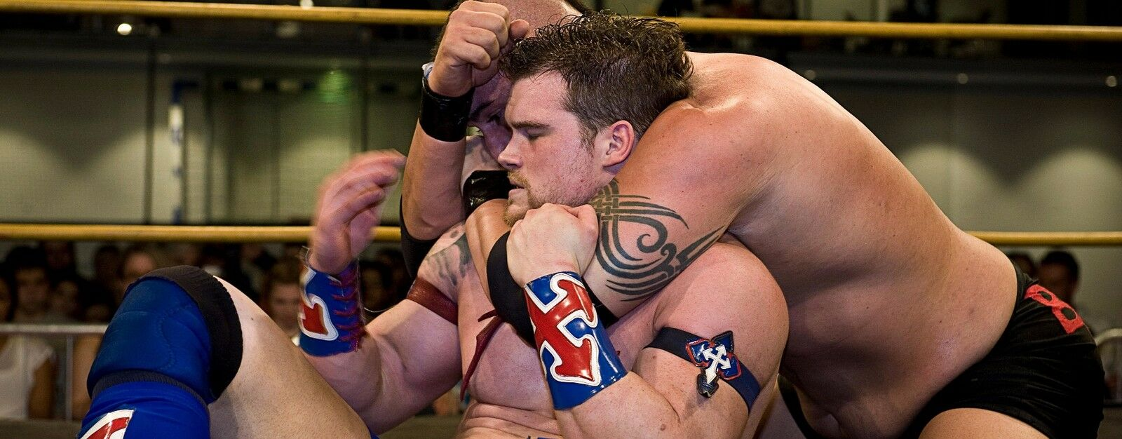 Ring of Honor Wrestling - Death Before Dishonor XV