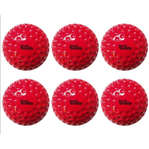 6 pk Feed Buddy Balls