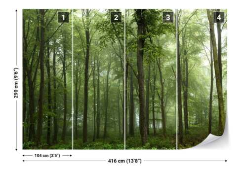 1X-1084769 Woodland Trees Greenery Mist Photo Wallpaper Wall Mural