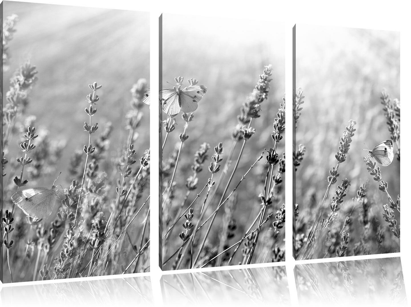 Mariposas Lienzo Auf Lavendelblumen Arte BW 3-Teiler Foto en Lienzo Mariposas Decoración de fd58b1