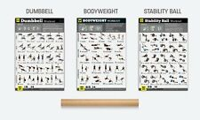 """Exercise Posters Set of 3 Workout Chart LAMINATED Strength Training 18""""X24"""""""