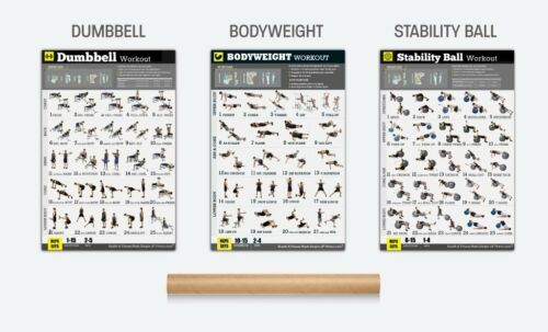 """Exercise Posters Set of 3 Workout Chart LAMINATED Strength Training 18/""""X24/"""""""