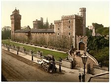 3 Victorian Views of Caerphilly & Cardiff Castle Old Photo Set Pictures Poster