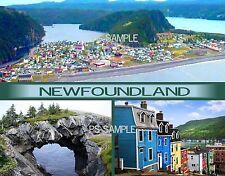 Canada - NEWFOUNDLAND - Travel Souvenir Fridge Magnet