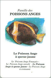 PLAYING-CARD-CARTE-A-JOUER-Poisson-ange-a-queu-jaune-Angelfish