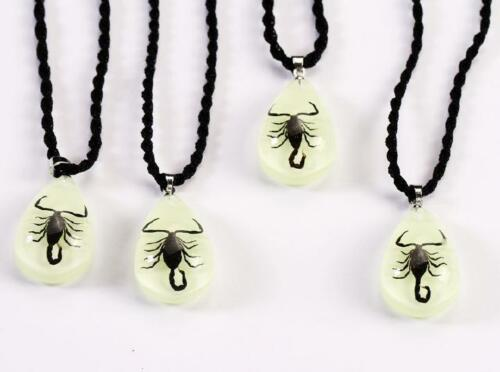 12 PCS Glow Fashion MINI Style Teardrop Pendant Black Scorpion King