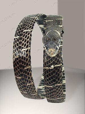 Mangrove Taxidermy Snakeskin Belt ### NEW