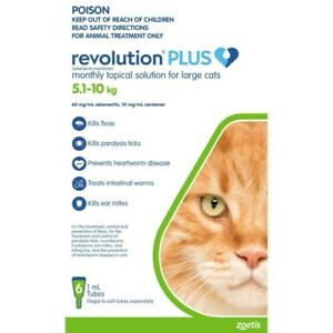 Revolution Plus for Cats 5 - 10kg Large Green 6 Pack