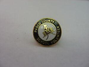 Pasco County School Volunteer Pin