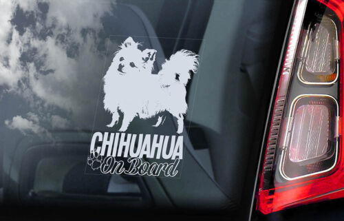 Chihuahua on Board White Long Haired Dog Sign Decal V07 Car Window Sticker